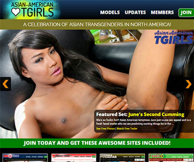asian american tgirls review