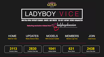 #25 - Ladyboy Vice<br>(88 / 100)