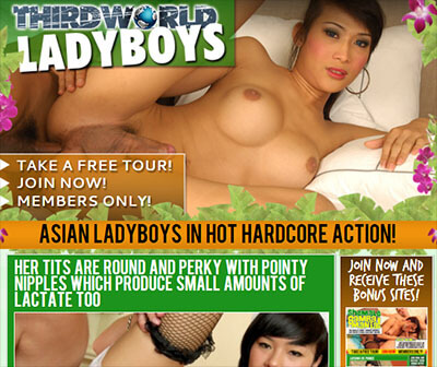third world ladyboys review