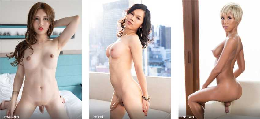 Transex Japan with some of the hottest Japanese trans models like Miran, Masem, Mimi and many more - Full review at Darkangelreviews.com